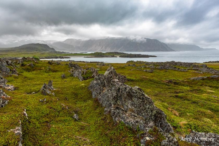 Berlevag landscape 8389