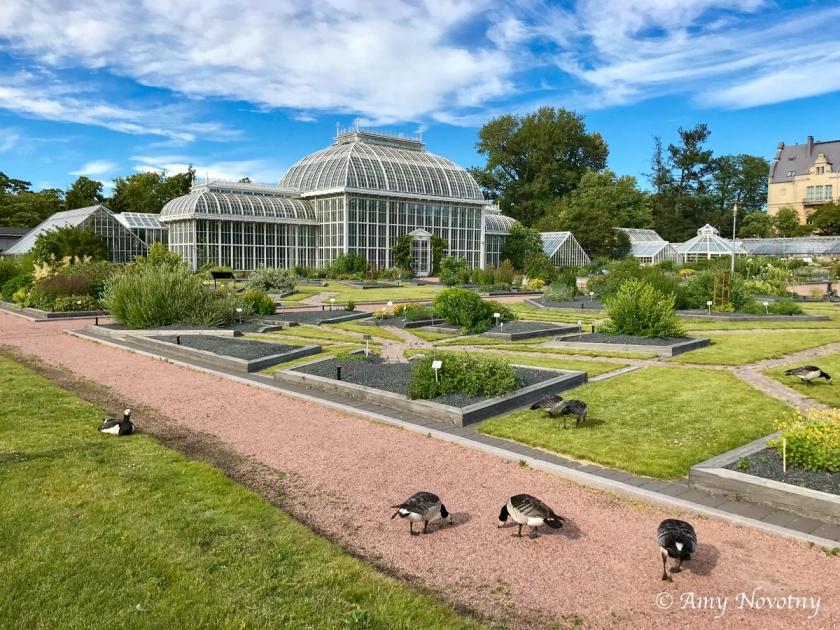 Helsinki botanical gardens 3007