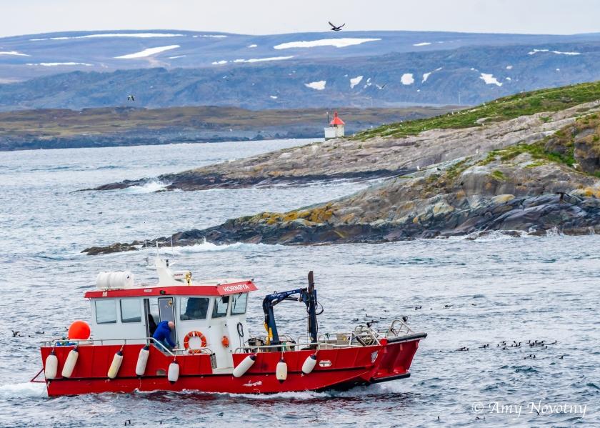 Hornoya boat 5843