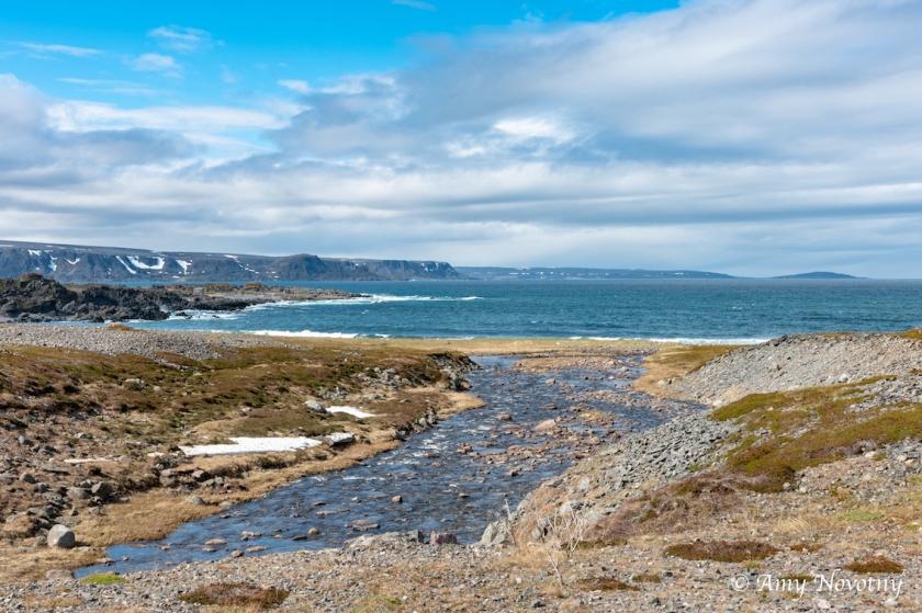 Scenic Sandfjord 7822