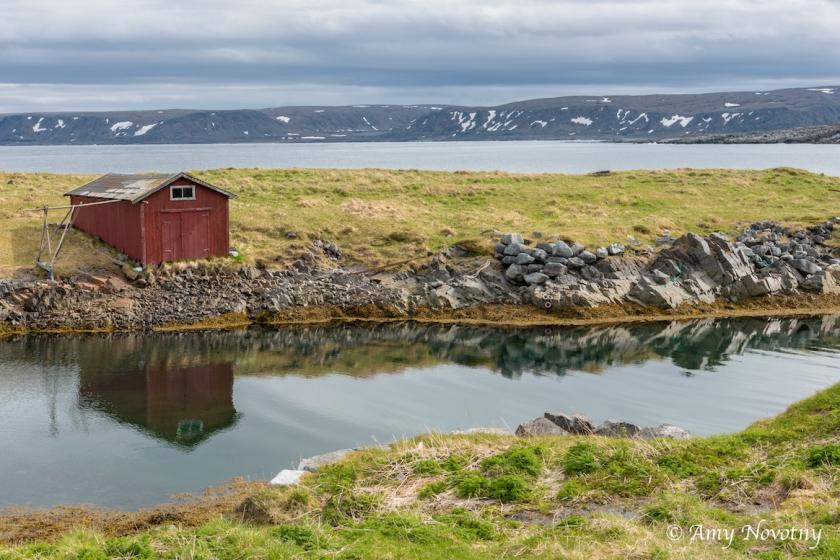 Scenic Sandfjord 8032