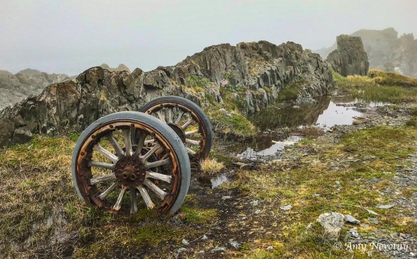 Veines peninsula wheel 2611