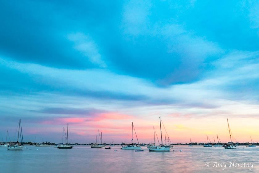 Sarasota marina July 15 2494