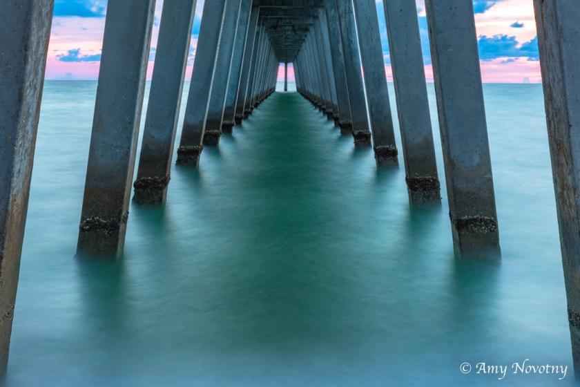 Venice pier Juy 16 2707