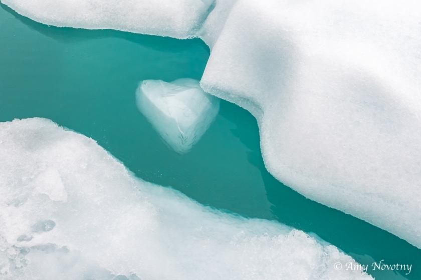 Qoroq Glacier 9021 August 20, 2018