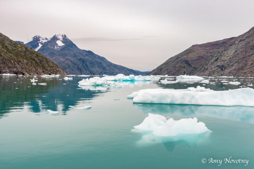 Qoroq Glacier 9047 August 20, 2018