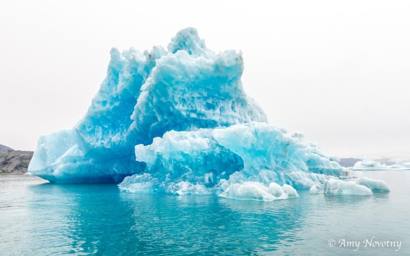 Qoroq Glacier 9083 August 20, 2018