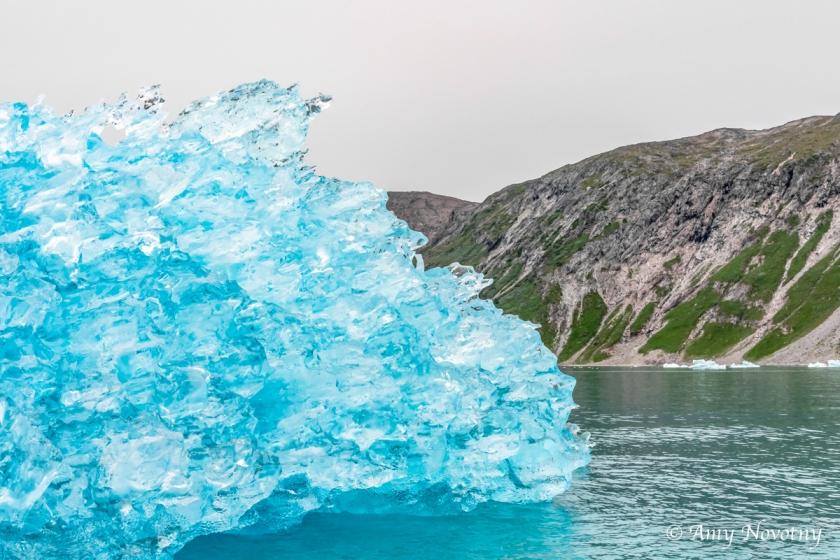 Qoroq Glacier 9120 August 20, 2018
