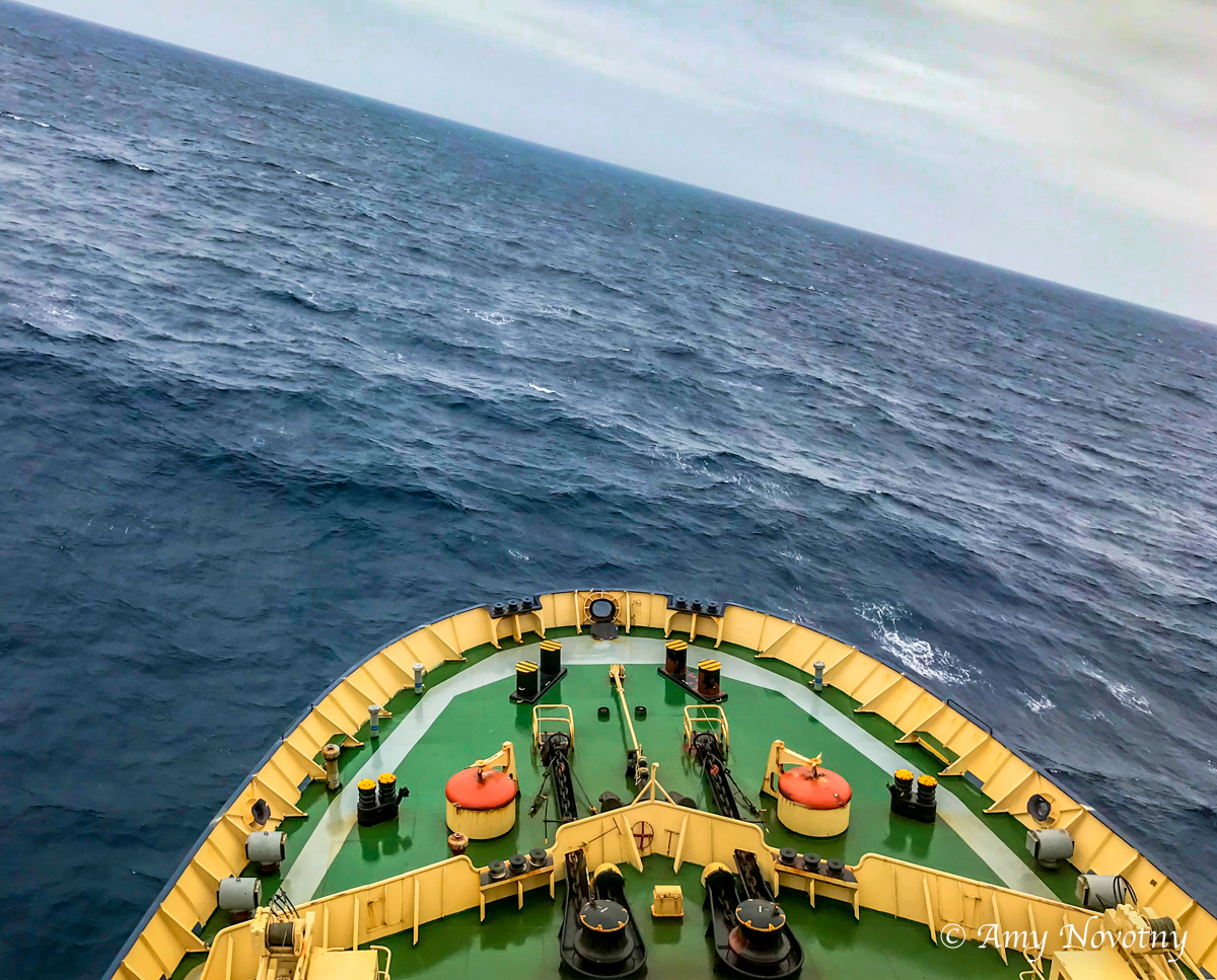 Ship 8331 October 2018